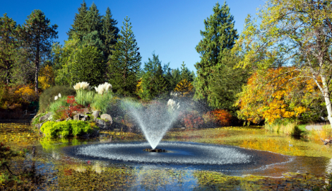 Pond Place of Michigan: Pond Supplies & Management in Milford, MI - fountain-pond-management